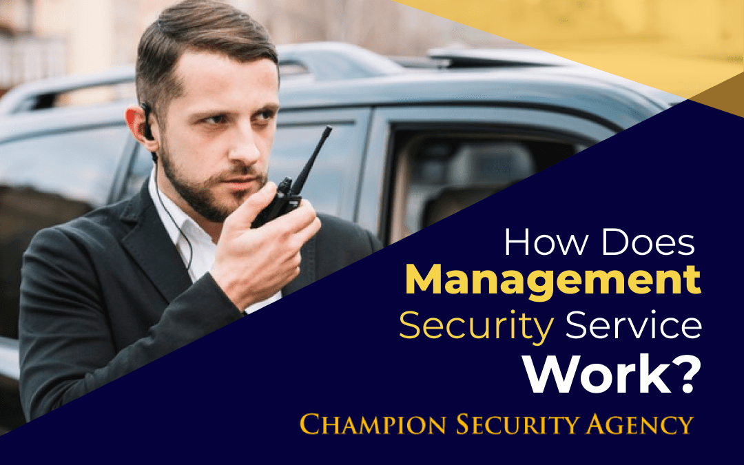 How does Managed Security Services Work